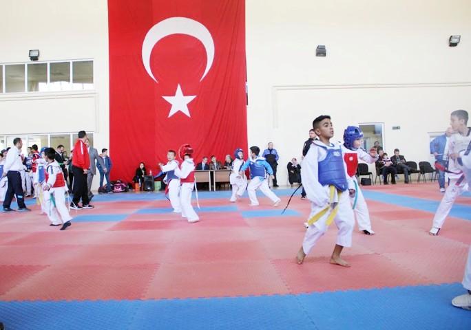 Bölgesel Taekwondo  Şampiyonası düzenledi