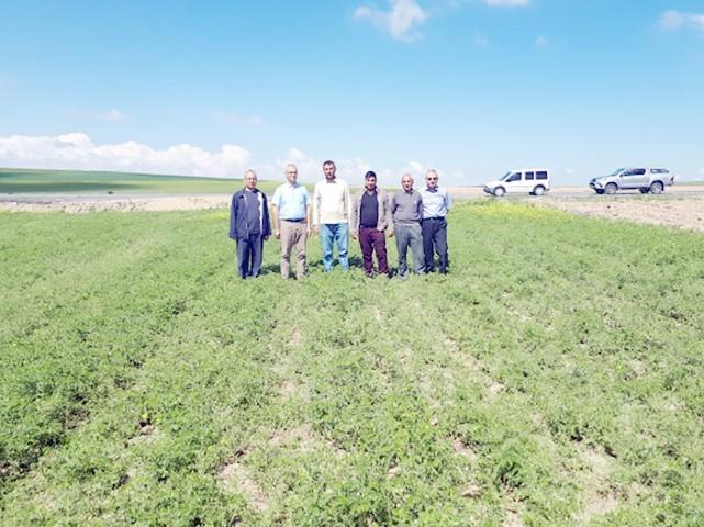 Özdemir, Nohut hastalığı konusunda çiftçileri uyardı
