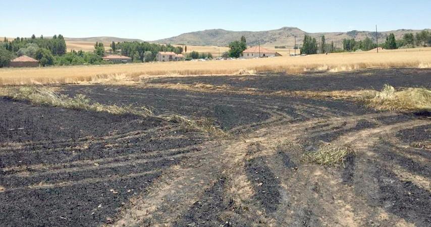 Ekili tarlada çıkan yangın söndürüldü
