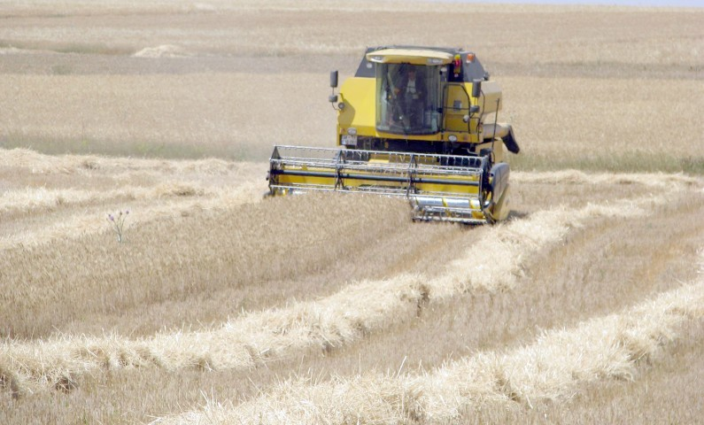 Bayraktar, tarımdaki  gelişmeleri değerlendirdi