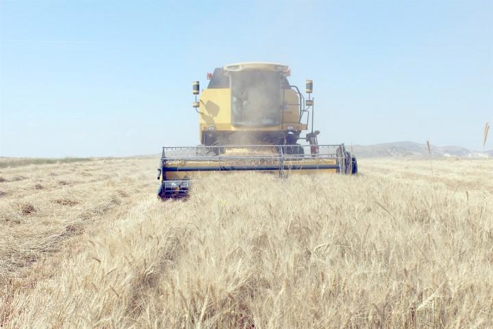 Toprak İşlemesiz tarımda başarı