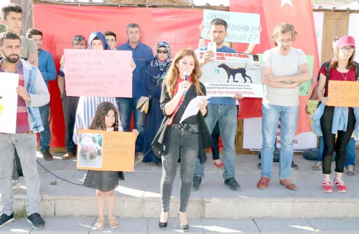 Hayvan severler'den protesto
