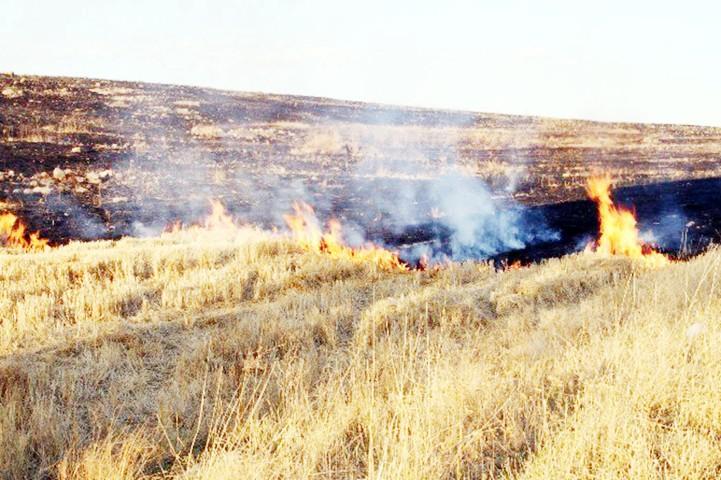 Albayrak'tan  vatandaşlara yangın uyarısı