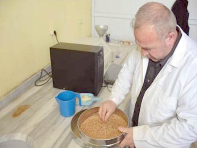 Erkekli: Çiftçimiz buğdayının  değerini borsamızda öğreniyor