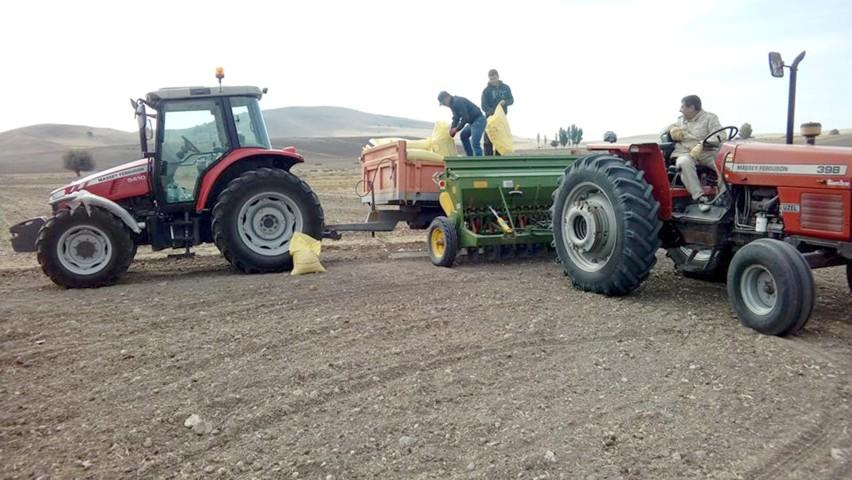 Yağış Yozgatlı çiftçileri sevindirdi