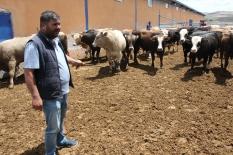 Yozgat'ta kurbanlık satışları başladı