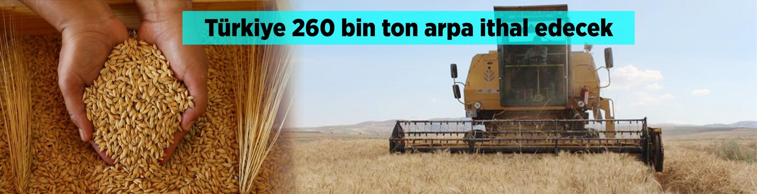 Türkiye 260 bin ton arpa ithal edecek